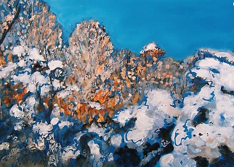 Snow 60cm x 40cm